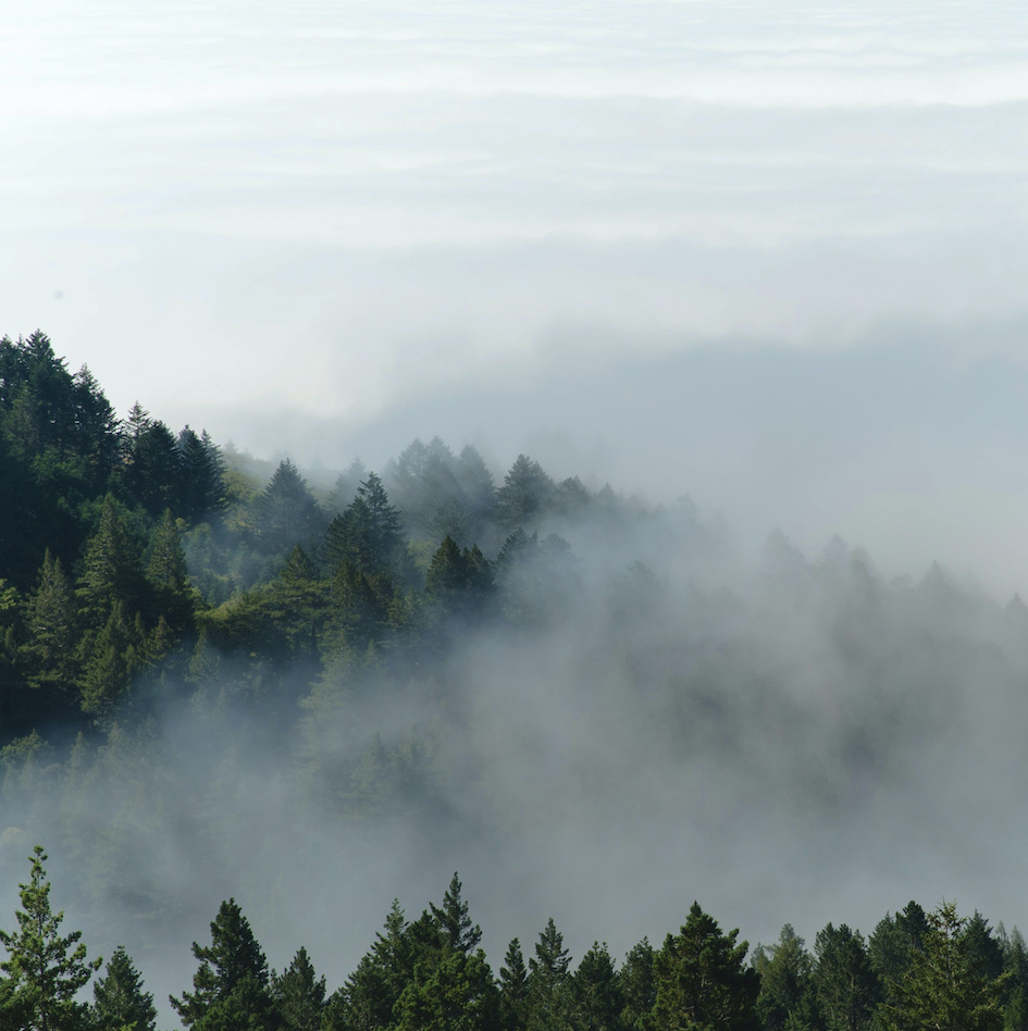 les s mlhou